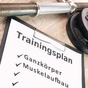 Ganzkörper Trainingsplan für Muskelaufbau