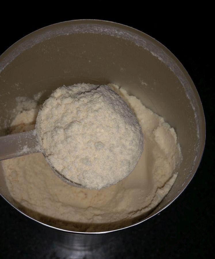 Bio Proteinpulver Test