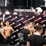 ProBro Fibo 2016