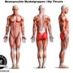 Hip Thrusts