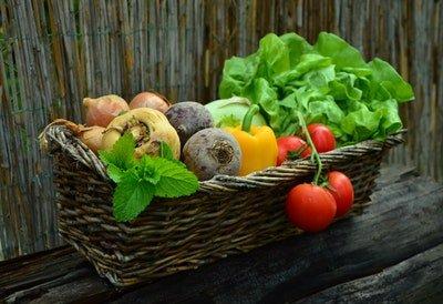 PSMF-Diät Ernährung & Training