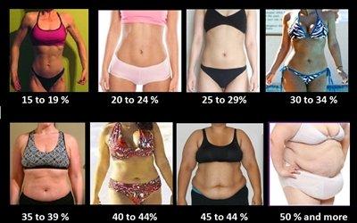 Körperfettanteil bei Frauen: Wann werden Muskeln sichtbar?