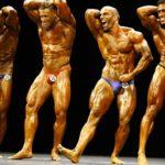 Bodybuilding-Trainingsplan