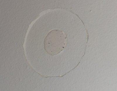 Schaeden an der Wand