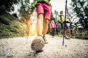 Nordic Walking Stöcke Test & Vergleich 2019