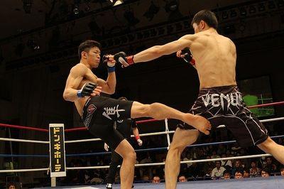 MMA Handschuhe Testsieger (1)